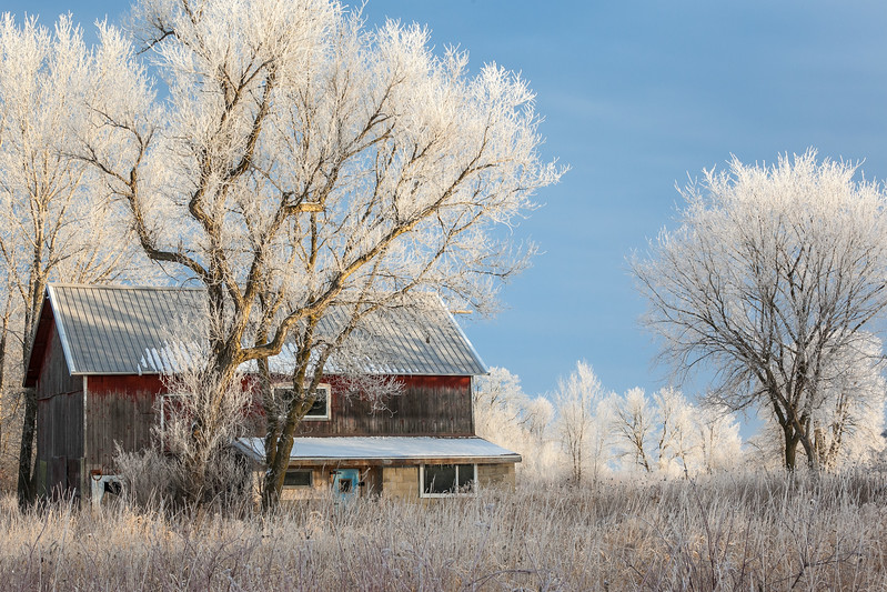 Old Barn in the Frost