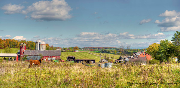 654 Farm Fall_tonemapped LR