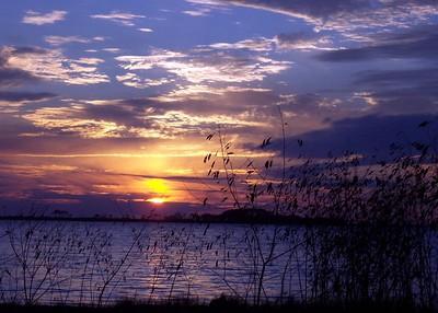 Beautiful Blues around the evening sun