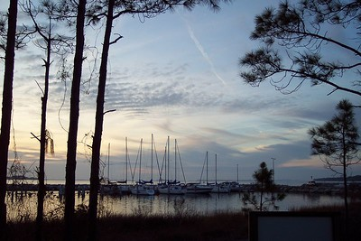 The Marina from the nature trail
