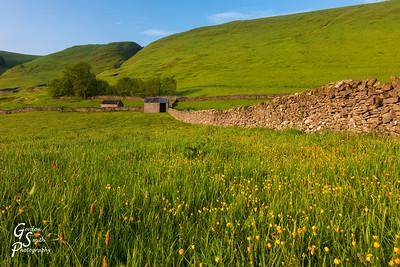 Stone Masonry Wall and Farm Building
