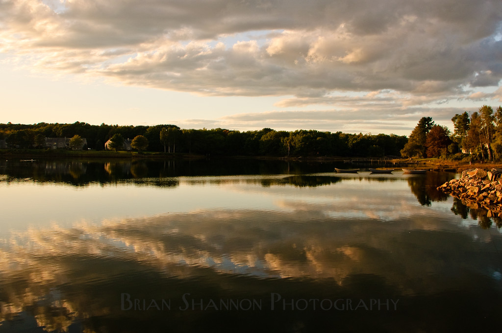 Soft light by Brian Shannon