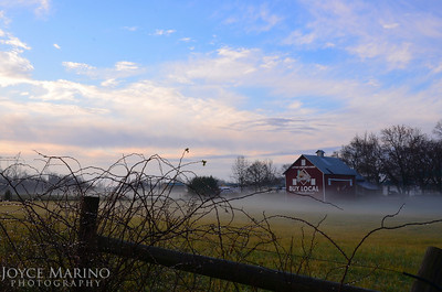 """Buy Local"" farm with rolling fog in early winter. #4571R"