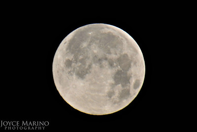 Master of the Universe -- spectacular full moon graced us with her beauty - #9984.