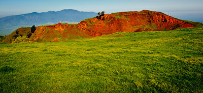Reds and Greens of Maui.