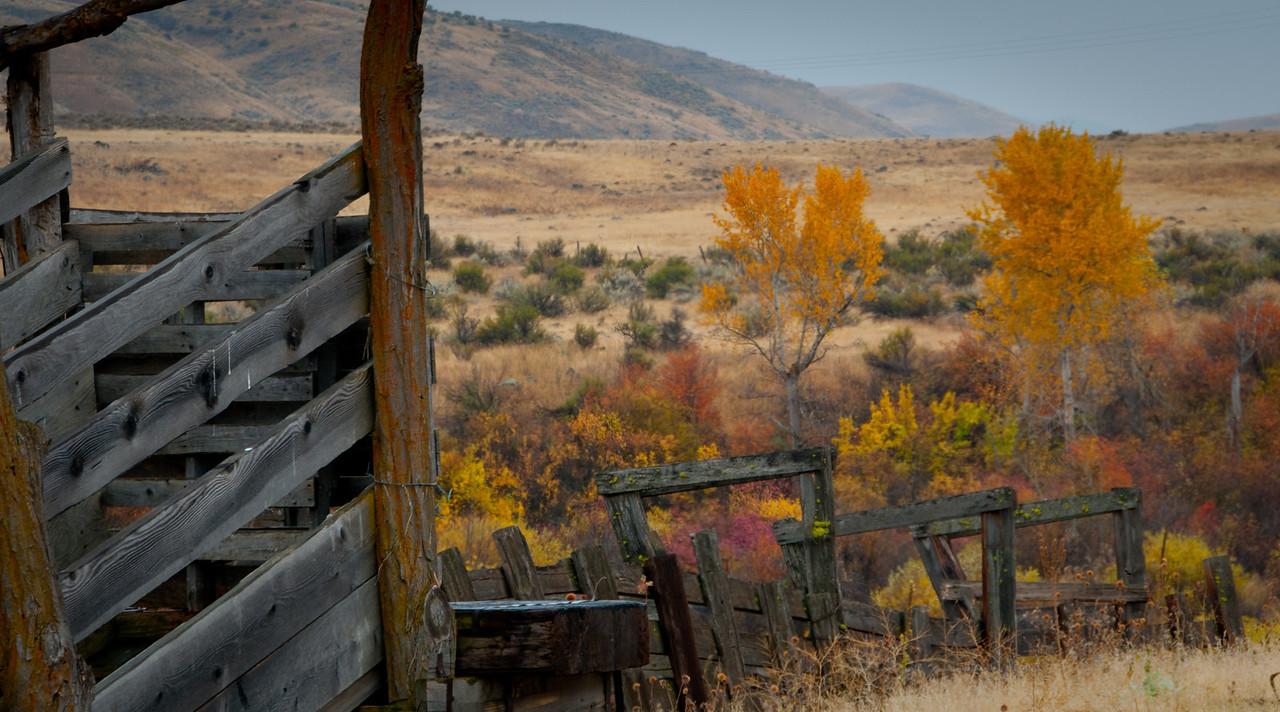 Fall Idaho
