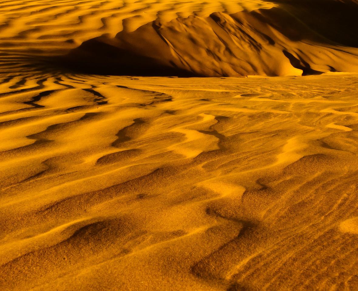 Golden Dunes.  Magdelena Bay - Baja, Mexico