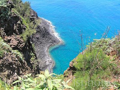 Kilauea point Kauai