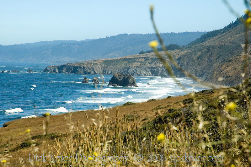 Beautiful view of the ocean and California coast on route CA1 north of Fort Bragg, CA.<br /> ND70_2006-07-10DSC_4316-OceanFlowersUS1NearFortBraggCA-2.jpg