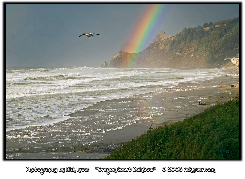 Rainbow at the Beach at Lands End, Lincoln City, Oregon (Zoom) (D70_2006-01-02DSC_2779-LandsEndRainbowCloseupSeagullFlying-nice-6.jpg)<br /> <br /> A beautiful double rainbow formed on the coast within 10 minutes of a rainshower hitting the beach. This is the last photo of the set taken as the rainbow was just starting to fade. A very nice New Year's treat on the Oregon Coast!
