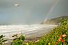 Double Rainbow on the Oregon Coast (Medium) (ND70_2006-01-02DSC_2795-LandsEndDoubleRainbowSeagull-5 copy.jpg)