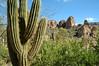Mountain view (ND70_2005-04-09DSC_1283-SaguaroMtnView-nice-2 copy.jpg)