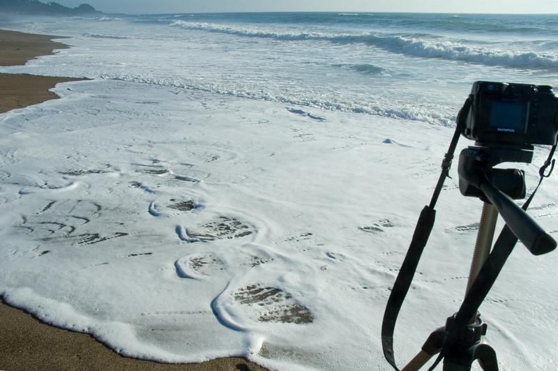 Taking Movies at the Ocean (ND70_2005-07-15DSC_1829-TakingMoviesInTheSurf-2 copy.jpg)