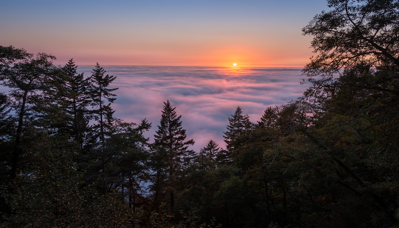 Sunset Above the Clouds - Northern California