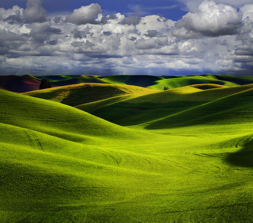 A Storm Be Moving In Any Minute - The Palouse, Washington