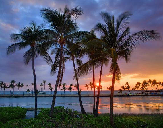 Just A Perfect Moment - A'Bay Pond, Kona, The Big Island, Hawaii