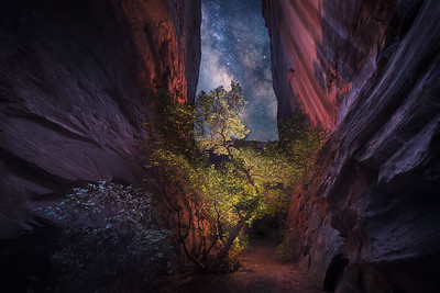 Mystery Canyon