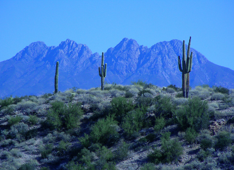Four Peaks while off-roading