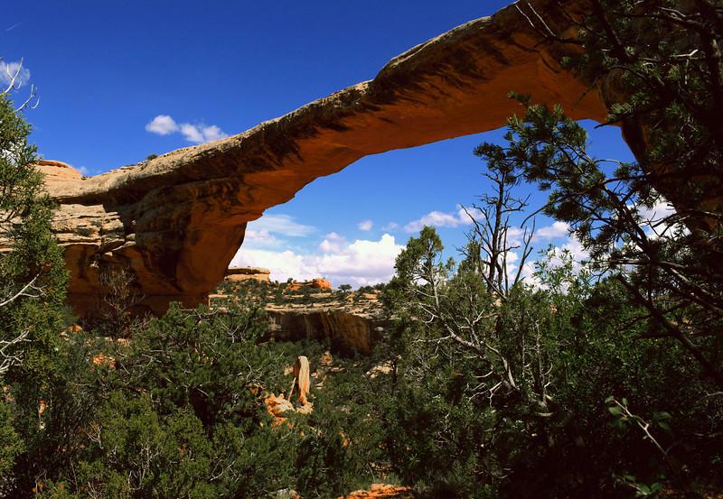 Natural Bridges NM, Utah