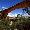 Natural Bridges NM, Utah