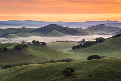 Wilson Hill View