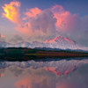 Pink Pastels Mirrored In Reflection Pond - Denali National Park, Alaska
