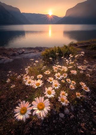 Minnewanka Lakeside