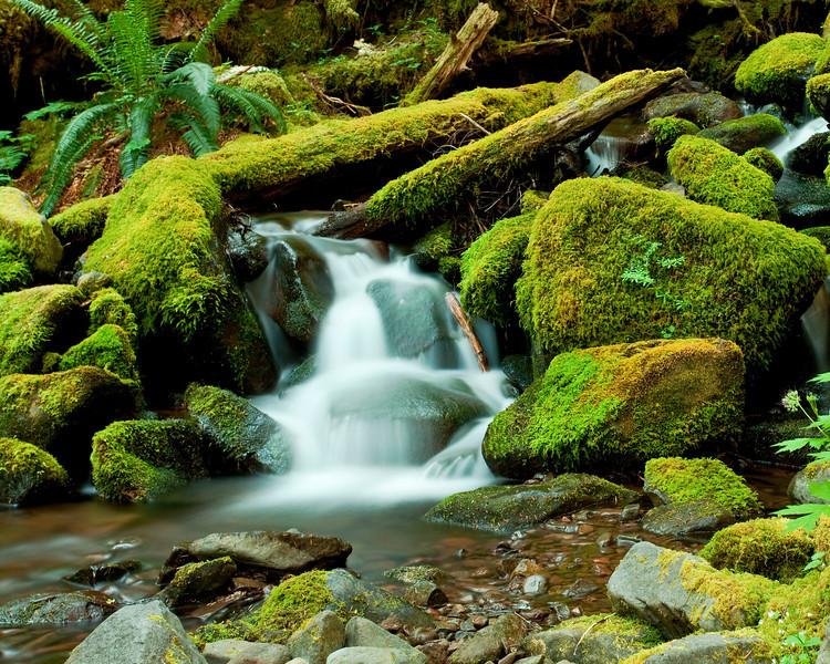 Hoh Rain Forest, Solduck Falls, Washington