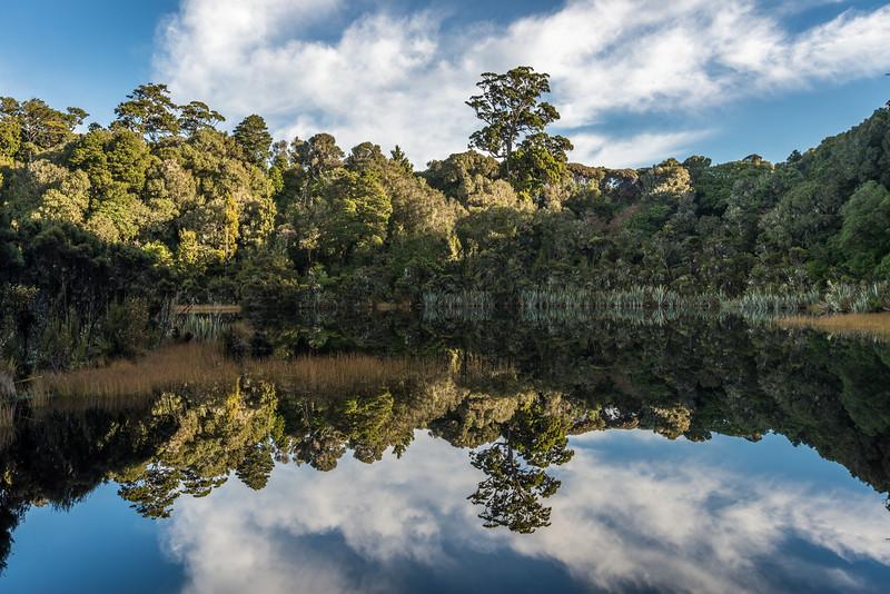Lake Wilkie, Catlins.