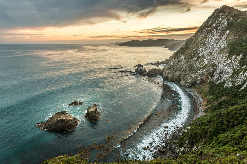 View of Roaring Bay from Nugget Point