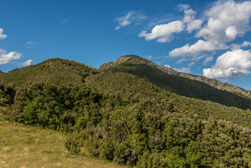 Mount Fyffe - not the most exiciting looking hill, but a very scenic location once you are on it!