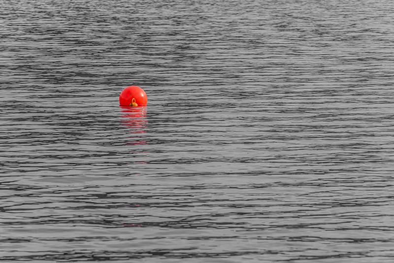 Wilson Bay, Lake Wakatipu