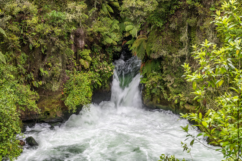 Tutea Falls on the Kaituna River. Okere Falls Scenic Reserve, Rotorua.