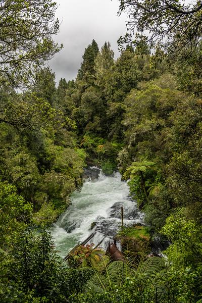 Kaituna Falls on the Kaituna River. Okere Falls Scenic Reserve, Rotorua.