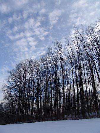 Winter at Brandywine Creek - Wilmington, Delaware