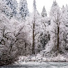67  G Lewisville Snow Trees and River BW