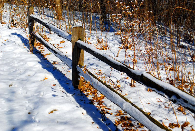 Winter trail fence