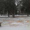 Feb Ice/Snow storm