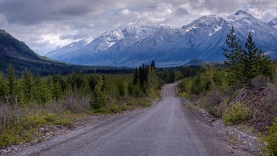 Logging Road, looking South toward Fernie, BC (near Elkford)
