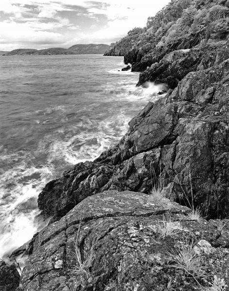 Fidalgo Headlands  I