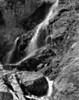 Spring in the Skagit Gorge  III