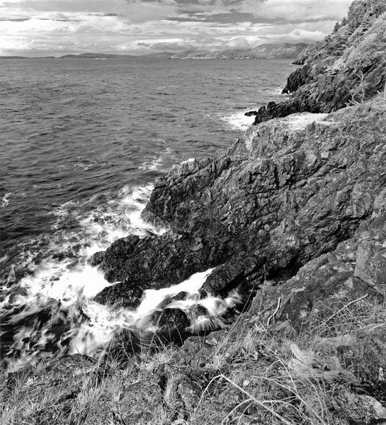 Fidalgo Headland  II