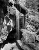Spring in the Skagit Gorge  II