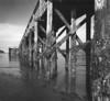 Bowman Bay Wharf