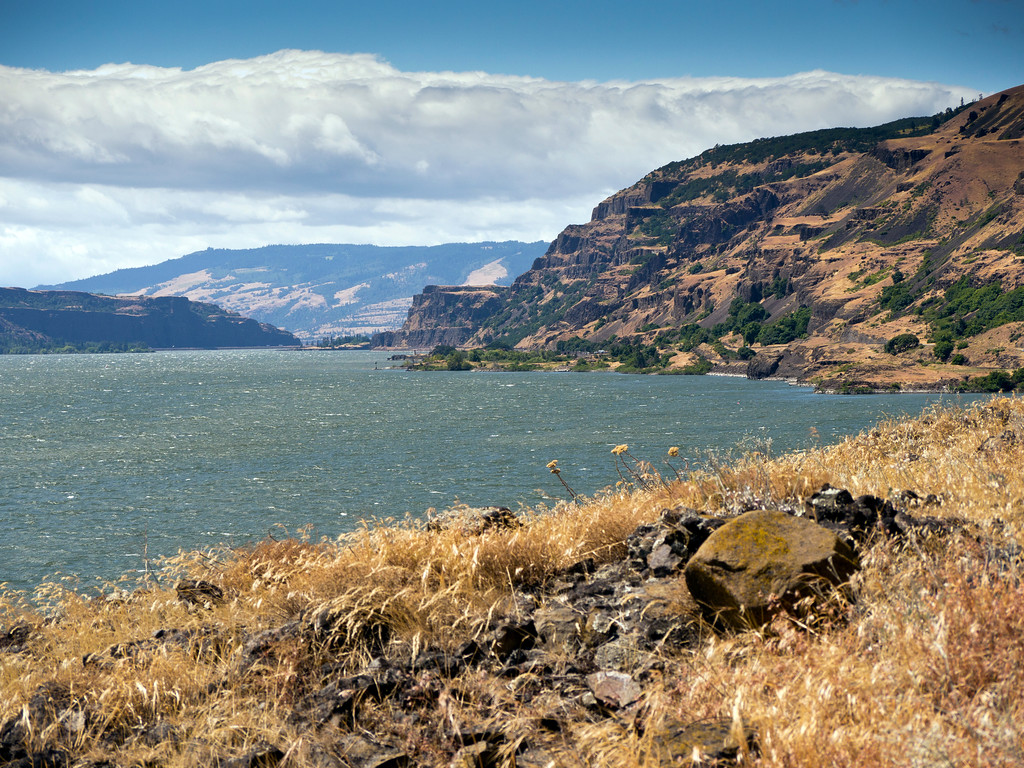 Columbia River near Ortley