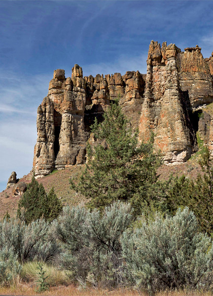 Clarno Palisades, John Day Fossil Beds National Monument: <br /> Eocene mudflows contain a rich heritage of tropical fossils, including bananas, figs, and palms from 45-50 million years ago.