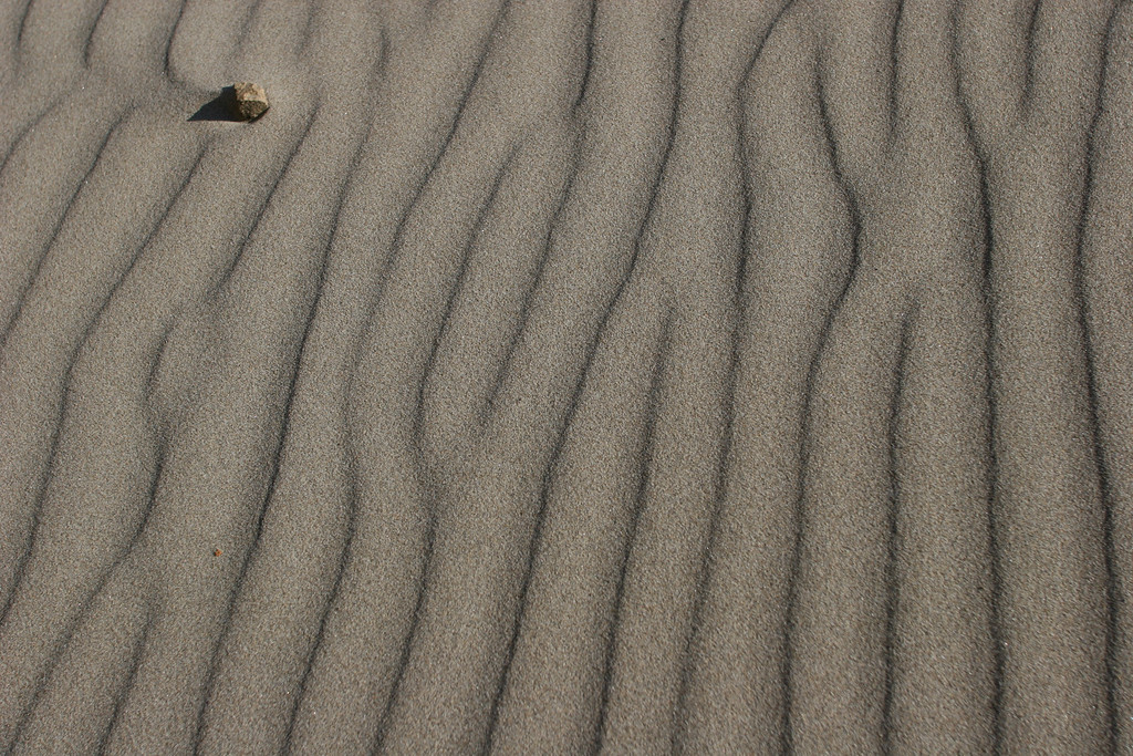 Ripple marks and pebble, Long Beach, Washington.