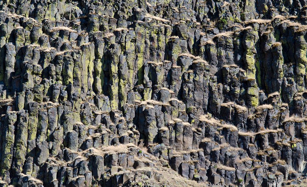 Mossy columns