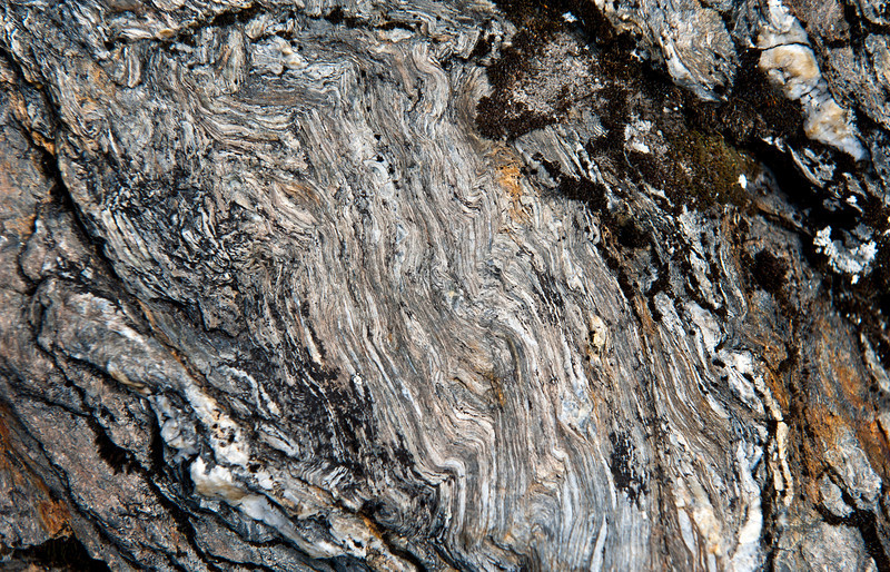Yellow Aster gneiss, North Cascades, Washingotn.