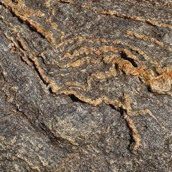 Closeup, blueschist, Mitchell, Oregon.